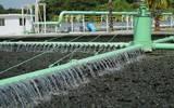 Trabajarán en la reparación de cada planta para que pueda tratar mayor cantidad de agua