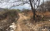 Ejidatarios detectaron asentamientos irregulares, los cuales ya se encuentran cercados y marcados con número, así como los inicios de obras de construcción