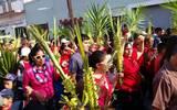 Suspenden procesión del domingo de Ramos por contingencia