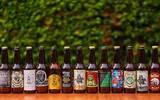 Actualmente se tienen detectadas alrededor de 26 marcas y empresas de cervezas artesanales en la entidad